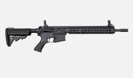 firearms_VWS-XVI-Warrior